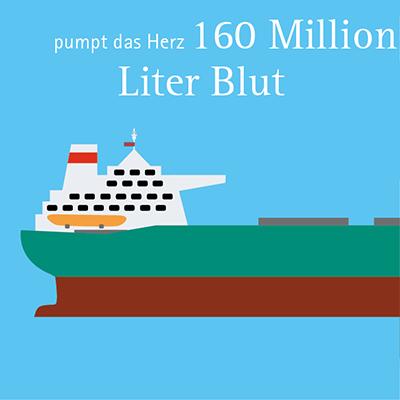 Infografiken Wernerwerke